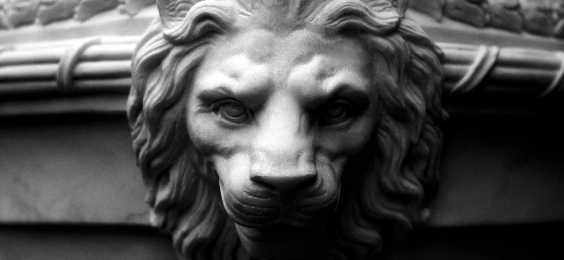Заказать львов