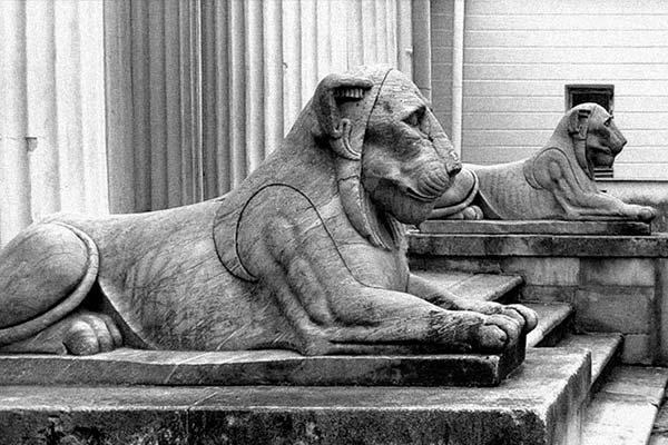 Скульптуры львов Москва.